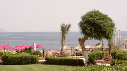 beautiful grounds of the hotel with sea view