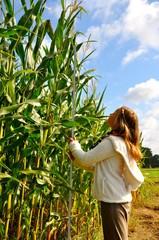 Maiswachstumsmessung durch Nachwuchs