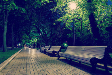benches and pavement in the light