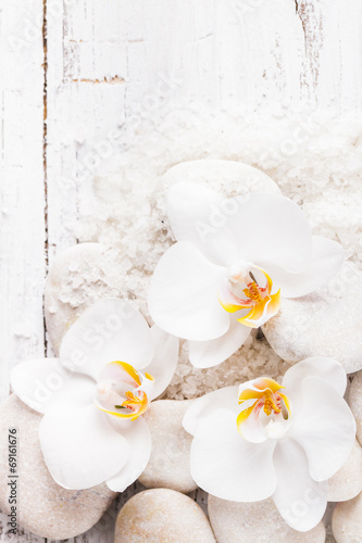 Orchid spa concept © oksix