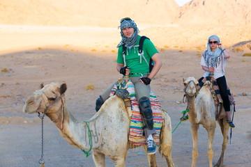 tour camel Egypt