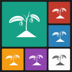 money grow icon