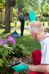 Couple working together in garden