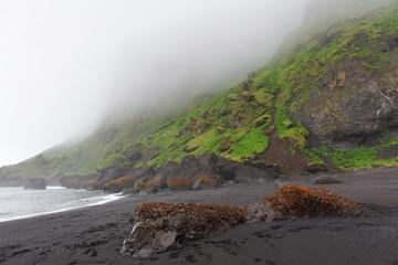 Black sand beach - Dyrholaey, South Iceland