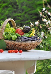 panier de légumes sur table de jardin