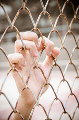 Hands with Mesh cage, Hands with steel mesh fence