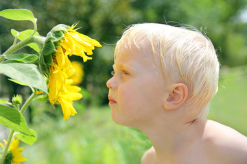 Young Child Outside Smelling Sunflower