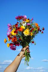 Main tenant un bouquet de fleurs des champs sur ciel bleu