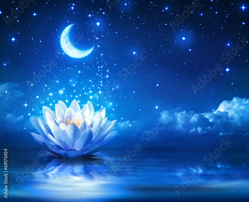 Canvas Meer waterlily and moon in starry night - magic background