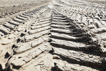 Close up of tyre tracks in the mud.