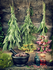 healing herbs, herbal medicine
