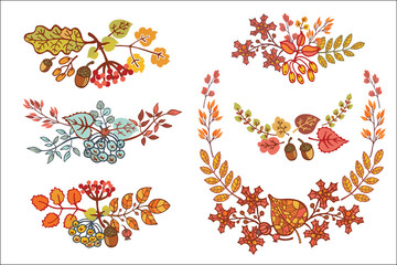 Autumn leaves set  with berries, leaf,branches,acorn