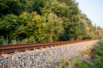 railroad next to the forrest