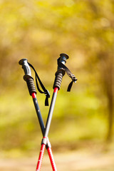 Nordic walking. Red sticks in park or forest