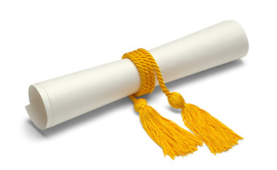 Degree With Honor Cords