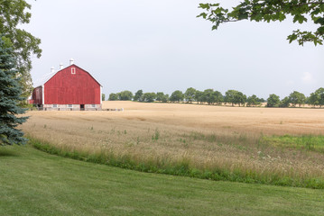 Farmland with red barn