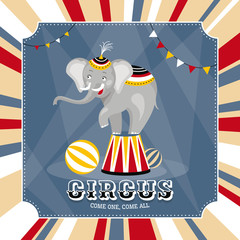 vector card with elephant