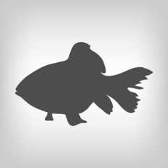 Grey fish silhouette