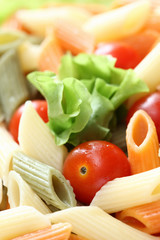 Rigatoni with tomatoes and lettuce