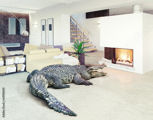 Deurstickers Krokodil crocodile in the luxury interior