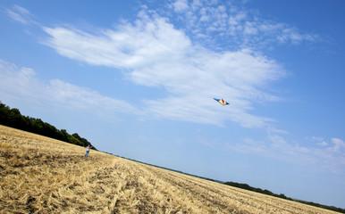 Воздушный змей в синем небе над скошенным полем
