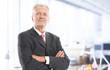 Executive senior businessman