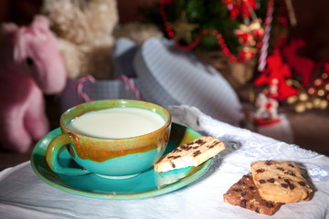 waiting for Santa Claus with a glass of milk and cookies
