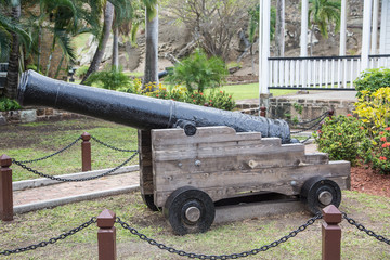 Old Black Cannon in Park