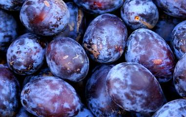 Wholesale plum fruits background