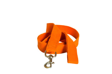 nylon dog lead on white background
