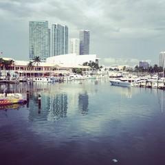 Miami bayside view
