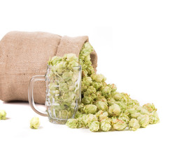 Glass full of green hop cones.