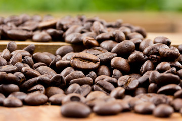 Coffee on wooden background Fresh coffee beans on wood and Natur
