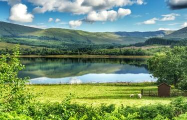 Scottish pond