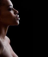 Beautiful  African-American woman. Black Beauty