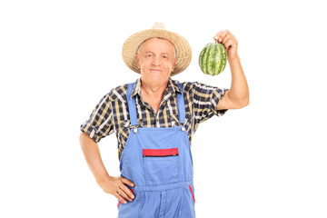 Mature farmer holding tiny watermelon