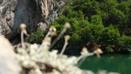 Panoramic shot of river Krka`s shore with rock