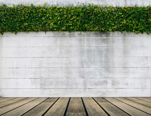 green leaf plant over grunge wall background