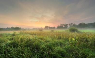 krajobraz wiejski, poranek