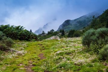 Sentier balisé des Pyrénées