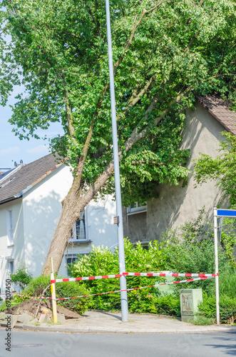 Fotobehang Onweer Baum gegen Hausgiebel gestürzt