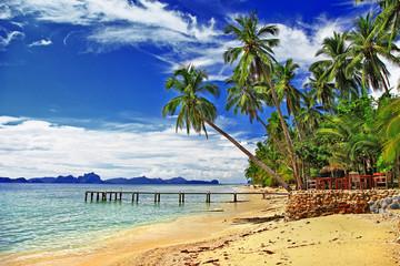 peaceful tropical beach scenery