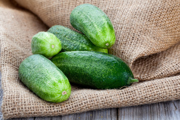 cucumbers on the wooden background