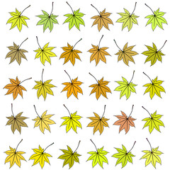 Set of autumn leaves of different color. Raster