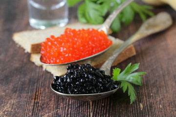 traditional Russian delicacy red and black caviar