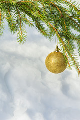 Golden Christmas ball on spruce branch
