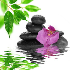 spa Background black stones on water