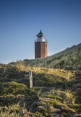Lightouse on dune vertical.