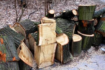 Aufgeschichtetes, gehacktes Holz