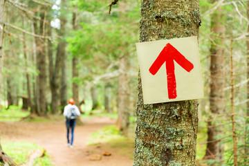 Path pointer